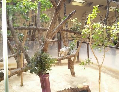 higashiyama-16.jpg